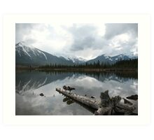 Snowy and crisp - even for the geese, Vermillion Lake, Canada Art Print