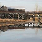 Old Railway Bridge and  Barn, Omemee Ontario Canada by Tracy Faught
