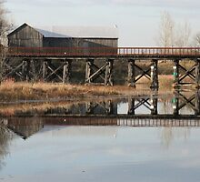 Old Railway Bridge and  Barn, Omemee Ontario Canada by Tracy Wazny