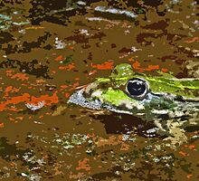 """""""Chives""""  The Star Frog summer in all its forms 43  paint 2   (c)(h) by Olao-Olavia / Okaio Créations fz 200 by Okaio - Olivier Caillaud"""