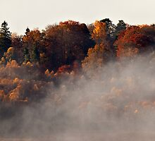 An Autumn Morning Has Broken by Kevin Skinner