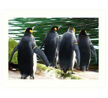 Penguin Parade, Edinburgh Zoo Art Print