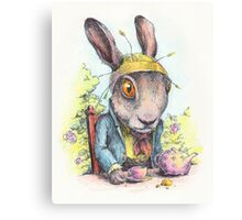 March Hare in May Canvas Print
