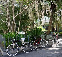 Where's MY Bike???? by Jacqueline Ison