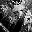 Barcelona Cathedral II by Nicole Shea