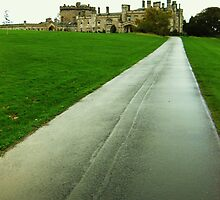 Down the drive to Dundas Castle, Scotland by KerryElaine