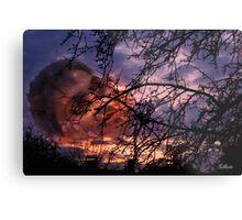 Unique sunset Metal Print