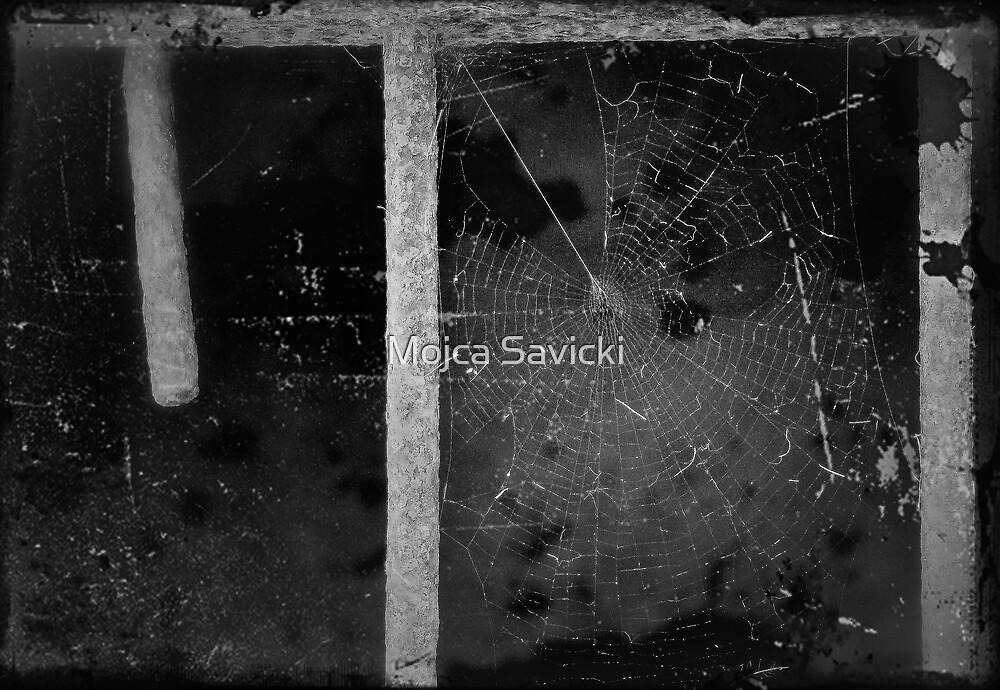 No Trespassing by Mojca Savicki