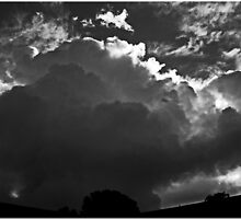 Silver Lining by Chet  King
