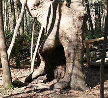 Tree Creature by Connie Kiskaden