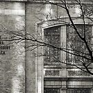 Seattle Historical Church with Tree by Cara Schingeck