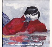 Ruddy Duck II by Phyllis Dixon