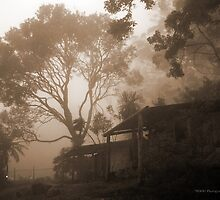 Misty Binna Burra by Jordan Miscamble
