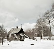 dilapidated wooden house cottage in winter  by Arletta Cwalina