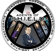 Agents of Shield by crystal0626