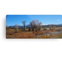 Pagosa Springs Metal Print