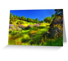 Wildflower Trail Greeting Card