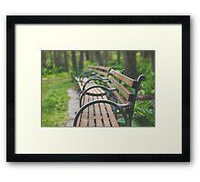 Garden Benches Framed Print