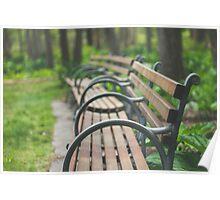 Garden Benches Poster