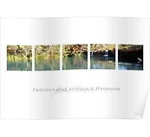 Fern Pool, Karajini Poster