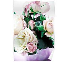 Rose-1 Poster