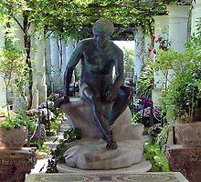 Villa San Michele Gardens - Capri, Italy by jules572