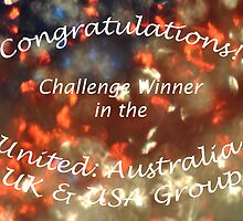 United Challenge Banner by MissyD