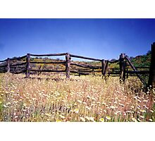 Old Stockyard, Kathleen Springs Photographic Print