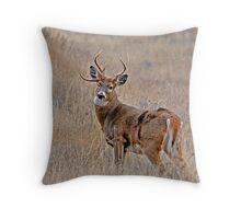 Nontypical Whitetail Throw Pillow
