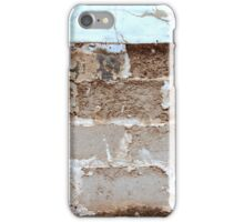 Decay 3 iPhone Case/Skin
