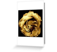 My special copper rose Greeting Card