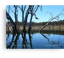 Bass Country on the Boyne River Canvas Print