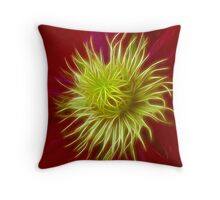 All eyes lead to the centre  >> Throw Pillow