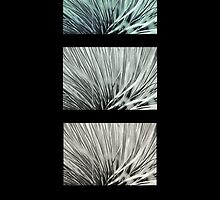 Grass Tree Abstract by pennyswork