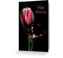 Happy Birthday... Greeting Card