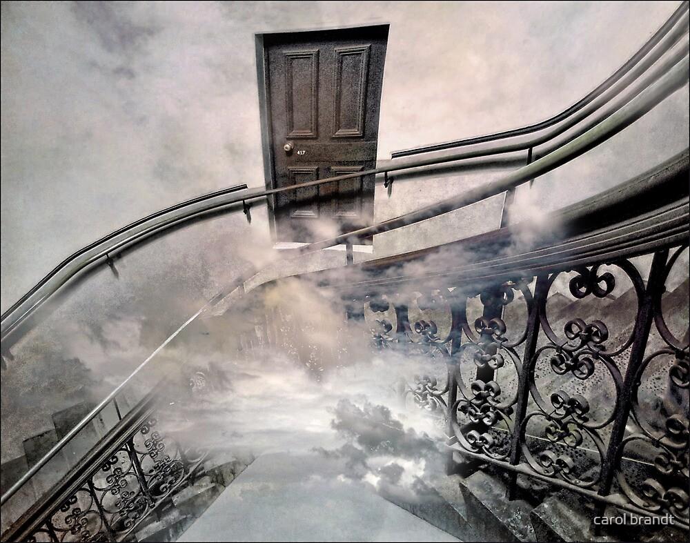 door to nowhere by carol brandt
