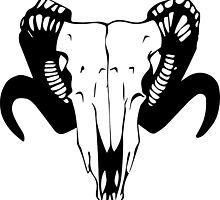 Cow Skull by Freja Friborg