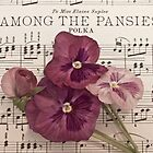 Among The Pansies  by Sandra Foster