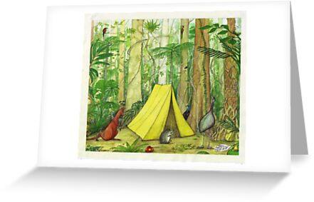 Daintree Campsite by Nestor