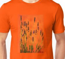 Lavenders at Sunset in Provence, FRANCE Unisex T-Shirt