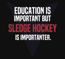 Education is important! But Sledge hockey is importanter. by margdbrown