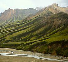 Landmannalaugar Hills, Southeast Iceland by Andy Townsend
