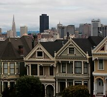 Revisited: the Painted Ladies by fototaker