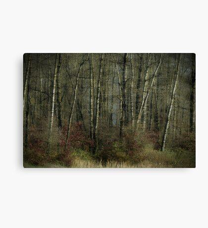 Trees of November Canvas Print