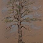 Tree in Ardgillan Park by Geraldine M Leahy