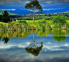 I stand alone in serenity! by Rinaldo Di Battista
