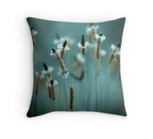 ...sparklers... Throw Pillow