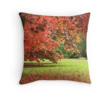 The Colour Red Throw Pillow