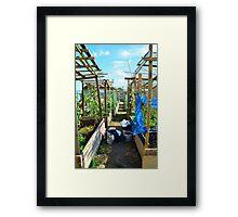 Community Garden Framed Print