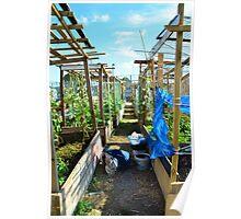 Community Garden Poster